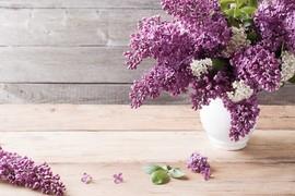 生花は困ることも。ギフト上手が、花束のかわりに贈るもの