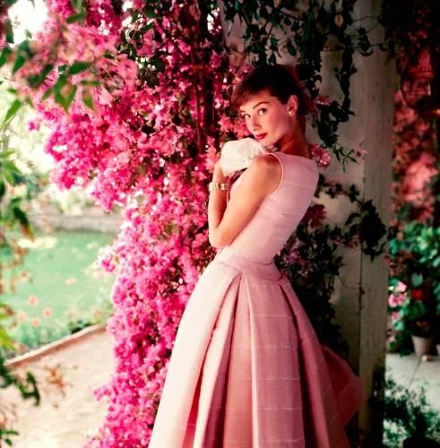 20150202_npg_6_Audrey Hepburn, 1955 © Norman Parkinson Ltd.jpg