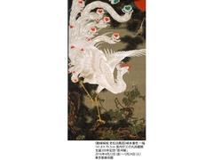 若冲生誕300年、あのまぼろしの33幅が一挙公開