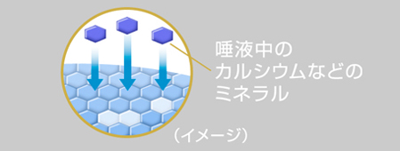 20160516_clear_illust4.jpg