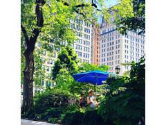 #15 ニューヨーカーを悩ませる夏の憂鬱【NYで生きていく】