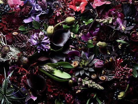 シックな黒い花を、一輪挿しに