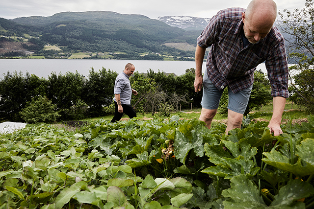 20170810_fjordic_10.jpg