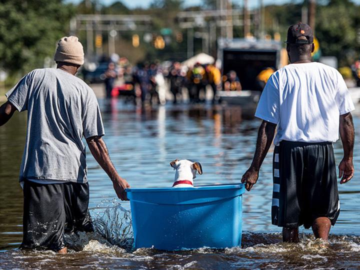 協力したい災害支援。寄付先のかしこい選び方 [The New York Times]