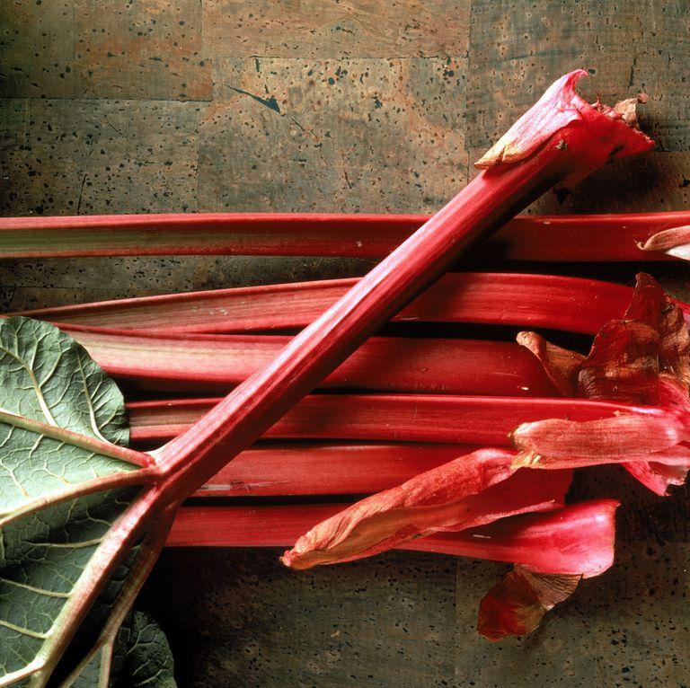 stalks-of-fresh-rhubarb-high-res-stock-photography-88175084-1541441738