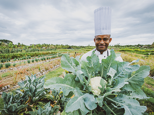 TheWestinDenarauIslandResort&Spa_Farm
