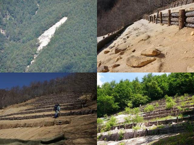 天然水の森プロジェクト