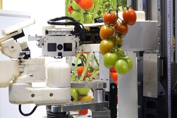 トマト収穫機、無人草刈りロボット……さまざまな技術開発が進む