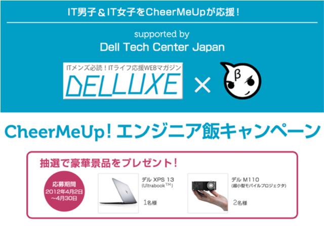 120329dell_campaign.jpg