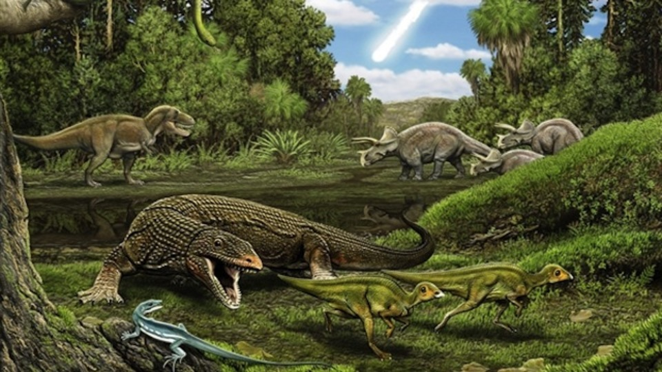 絶滅した恐竜時代のトカゲ発見、「オバマドン」と命名(イエール大)
