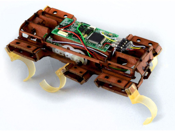 これ以上なくゴキブリなロボットが完成(動画あり)