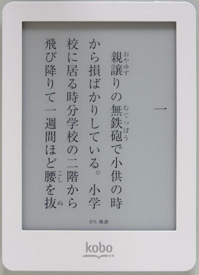 130116kobogloPR05.jpg
