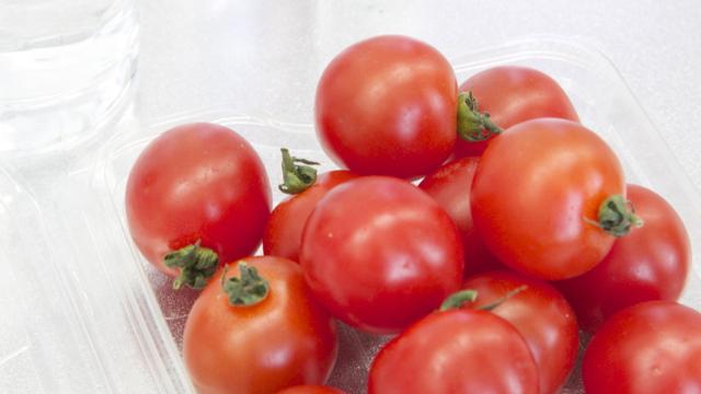130308_panasonic_tomato.jpg