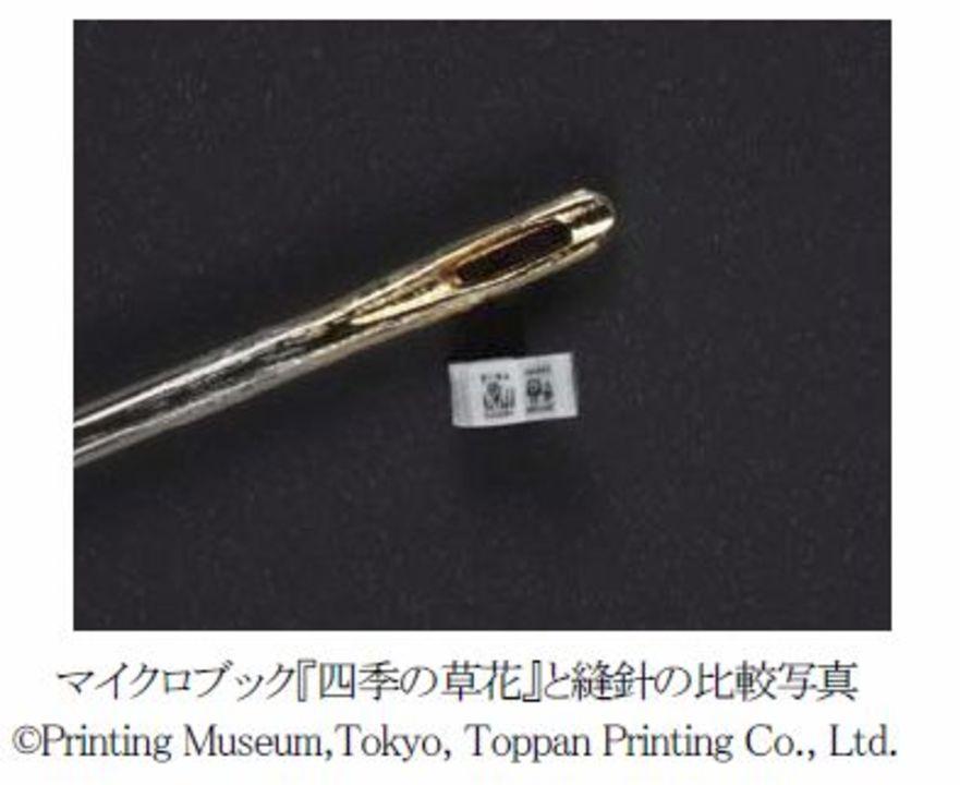 針の穴より小さい! 0.75mmの小さな本を凸版印刷が作ったよ