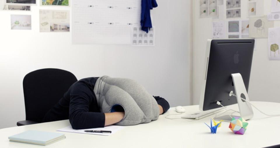 どこでも眠れるダチョウ枕