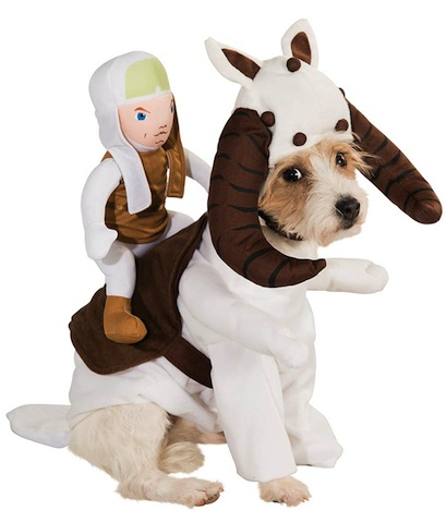 886581-Tauntaun-Dog-Costume-large.jpg