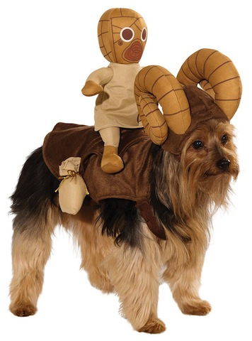 886583-Bantha-Dog-Costume-large.jpg