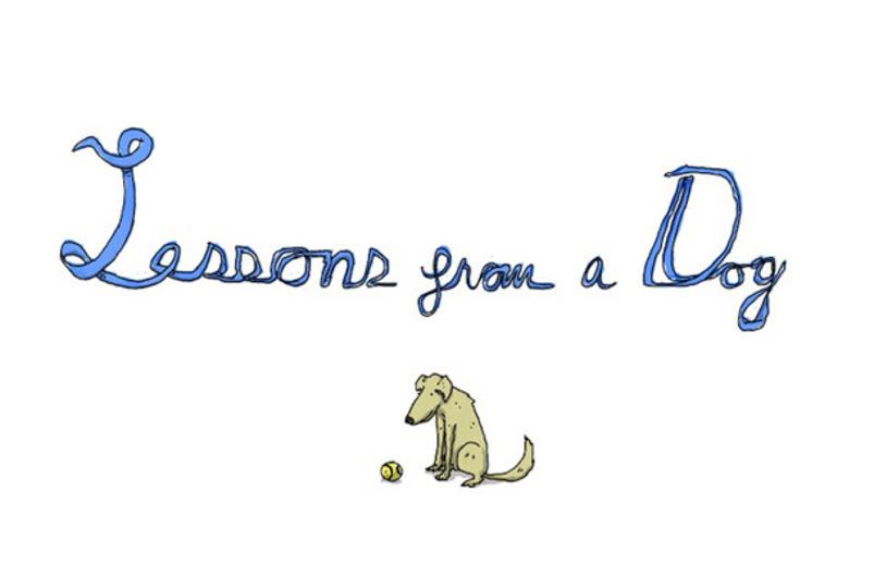 犬から教えられるシンプルで大切なこと