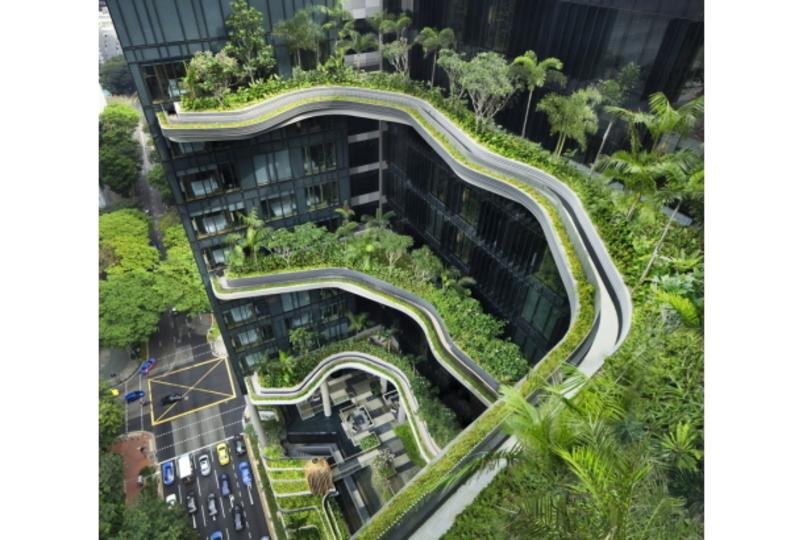 窓際の空中庭園。緑な景色が美しい高級ホテル