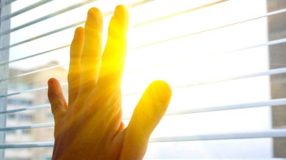 「夏は涼しく、冬は暖かい家」ができる窓用シート、産総研と住友化学が開発