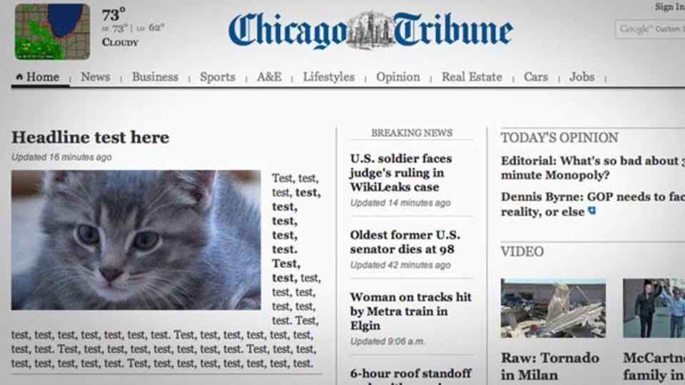 米大手新聞社がホームページトップ記事で痛恨の大ミス! 猫ちゃんとテストの文字が…