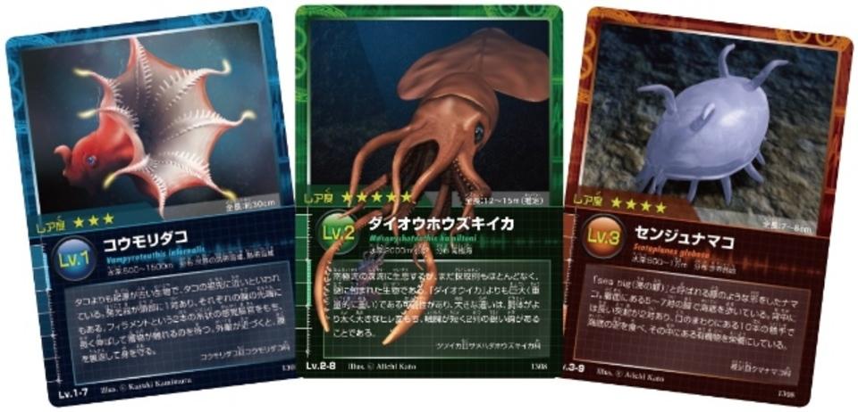 ダイオウイカも居るよ! 深海生物のカードゲームが登場