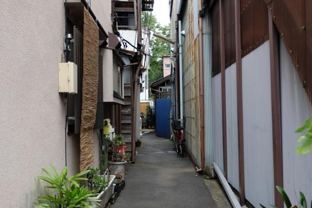130906_fuji_01.jpg