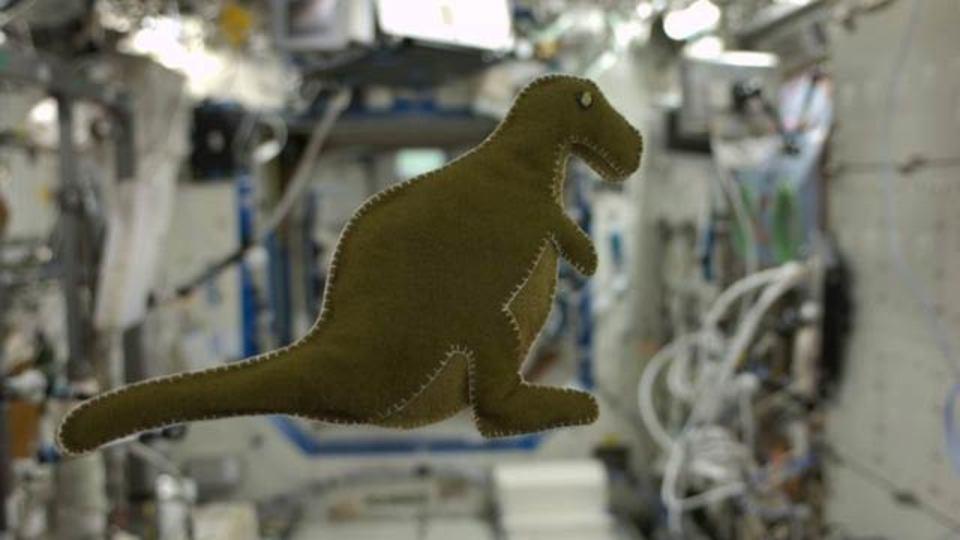 メイド・イン・宇宙、小さな恐竜のぬいぐるみ