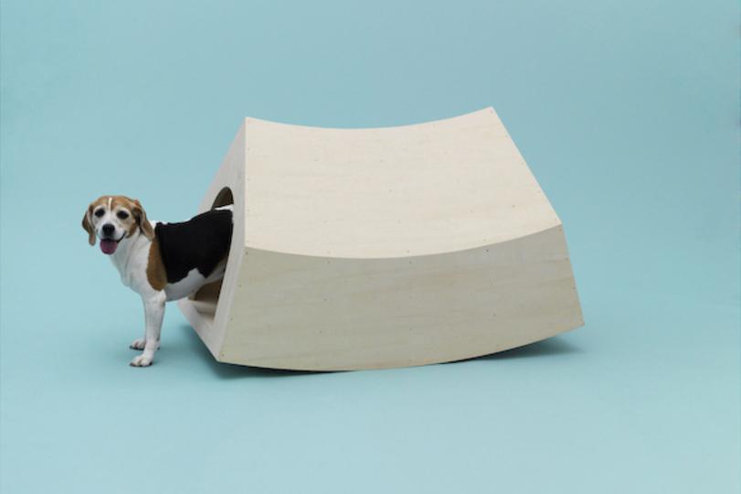 設計図もダウンロード可能! 世界的な建築家たちがつくった「犬のための建築」(ギャラリーあり)