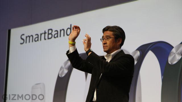 20131221_SmartBand3.jpg