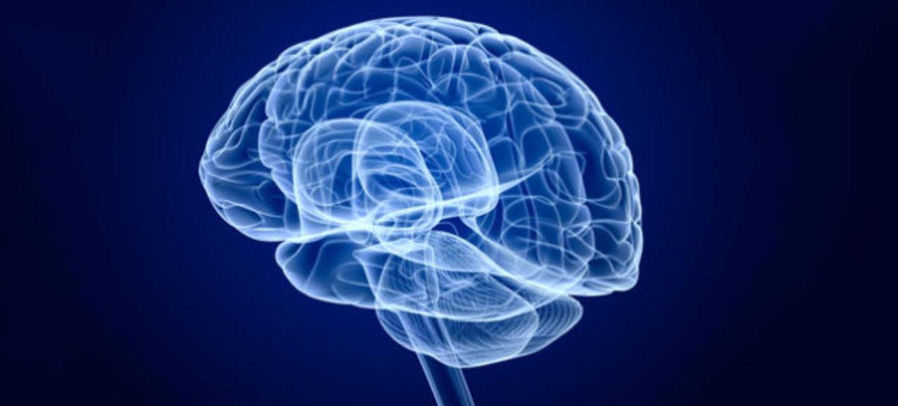 脳活動を見れば、何を話しているのかわかってしまうらしい