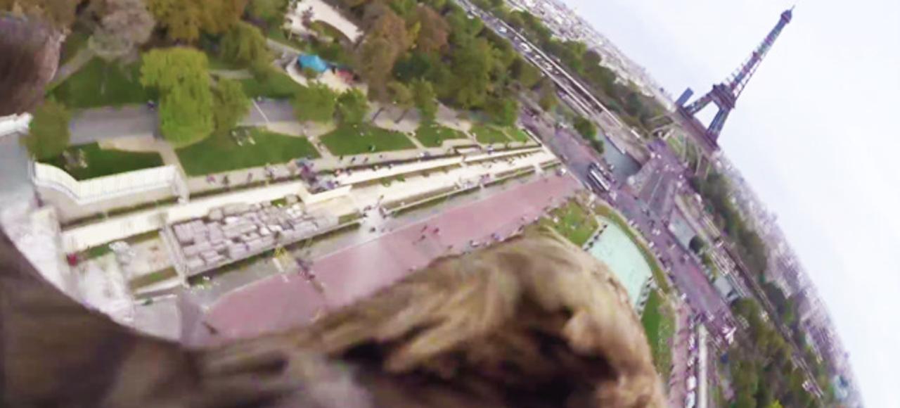 時速180kmで空を駆け抜ける「ワシ」の目から見たパリ