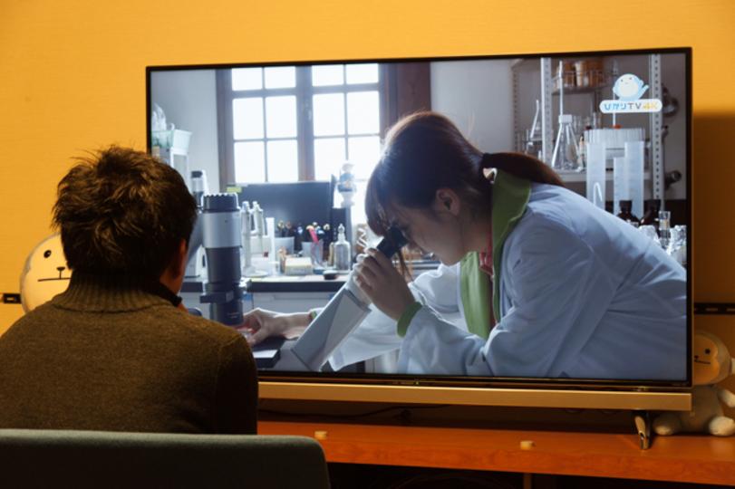 ひかりTVの4K VODをHDと比較してわかった。4Kテレビの買い時がようやく来た