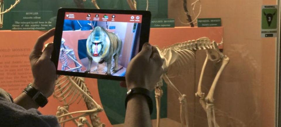 骨格標本に命を与えるアプリをスミソニアン博物館が開発