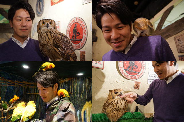 150126toyota_ecodriving_owl_cafe.jpg