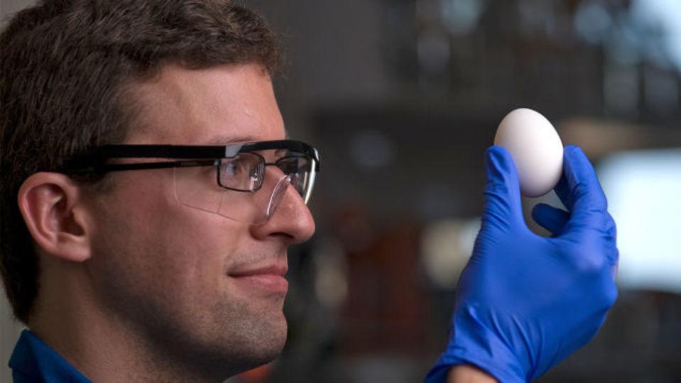 抗がん剤を安く作るのに役立つ、ゆで卵を生卵に戻す研究