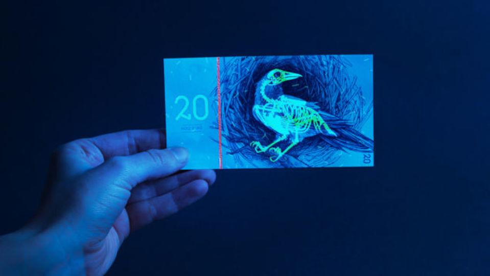 お金をアートにする紙幣のコンセプトデザイン