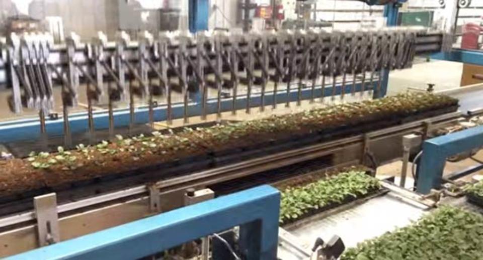 ぼーっとしたい人へ、苗を植えるロボットアーム動画がおすすめ