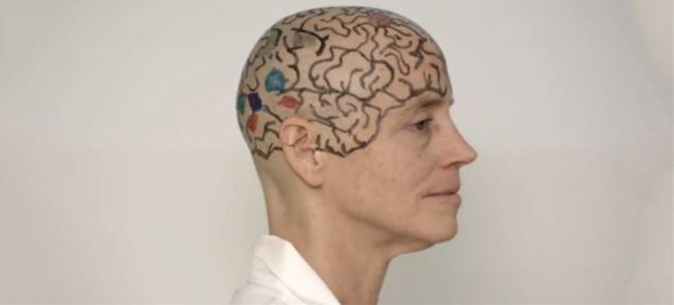 ツルッパゲになって脳の部位を説明するMIT教授