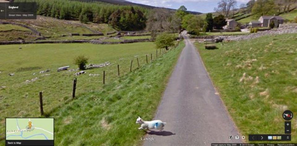 新サービス「google sheep view」。羊がいるとこ、わかります