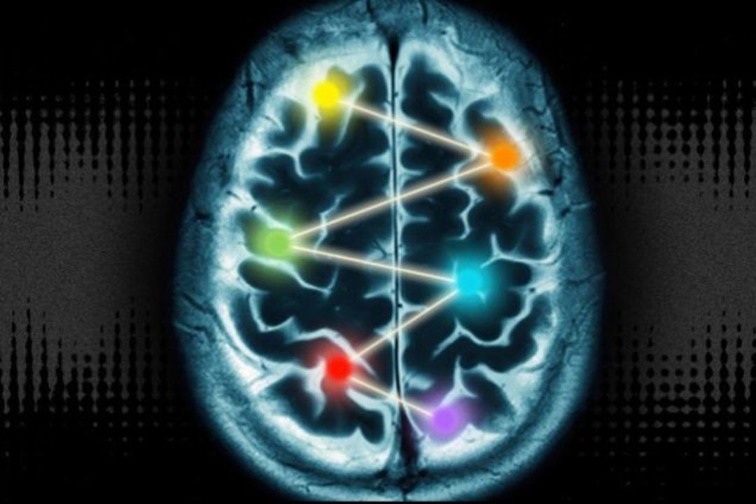 脳10%神話を未だに信じてるみなさまの必読