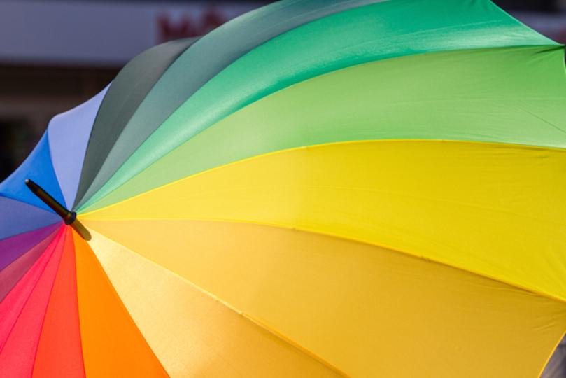 シンデレラ城もホワイトハウスも。同性婚合法化で全米がレインボー