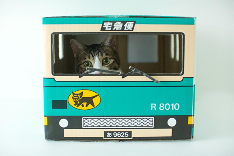 リアル猫の宅急便、クロネコヤマトのダンボール猫がきゃわわ