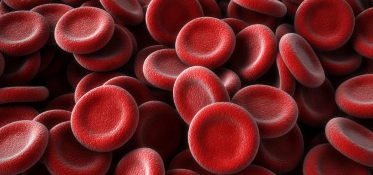 イギリスで「人工血液」が臨床試験段階に