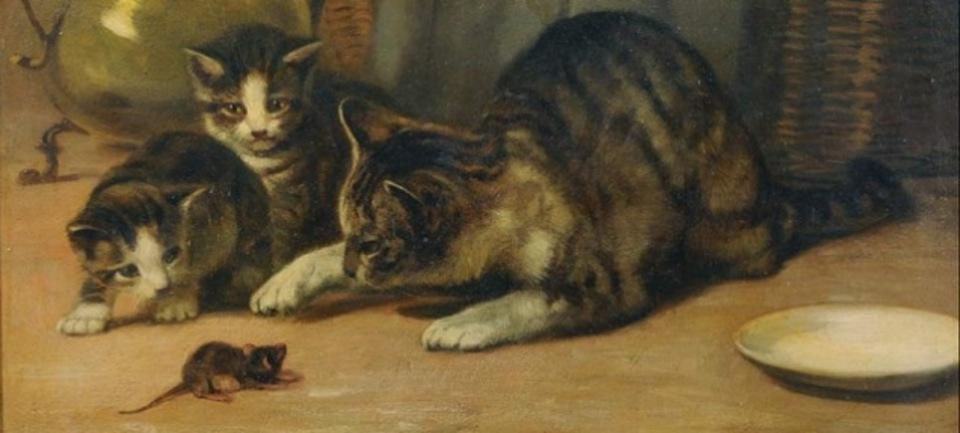 猫の尿の臭いに慣れたネズミの不思議な行動とは?