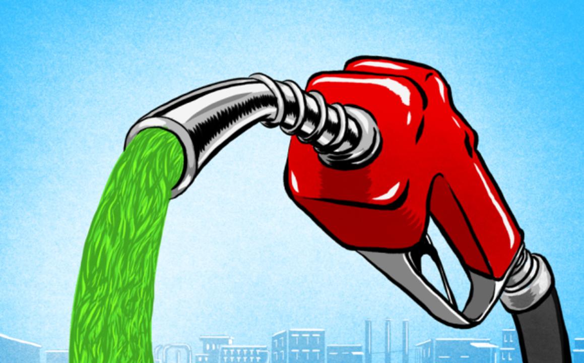未来の燃料は、藻だ!