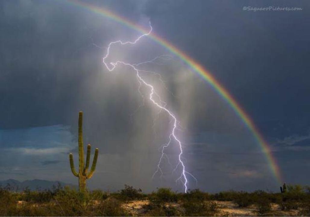 雷と虹の粋な競演