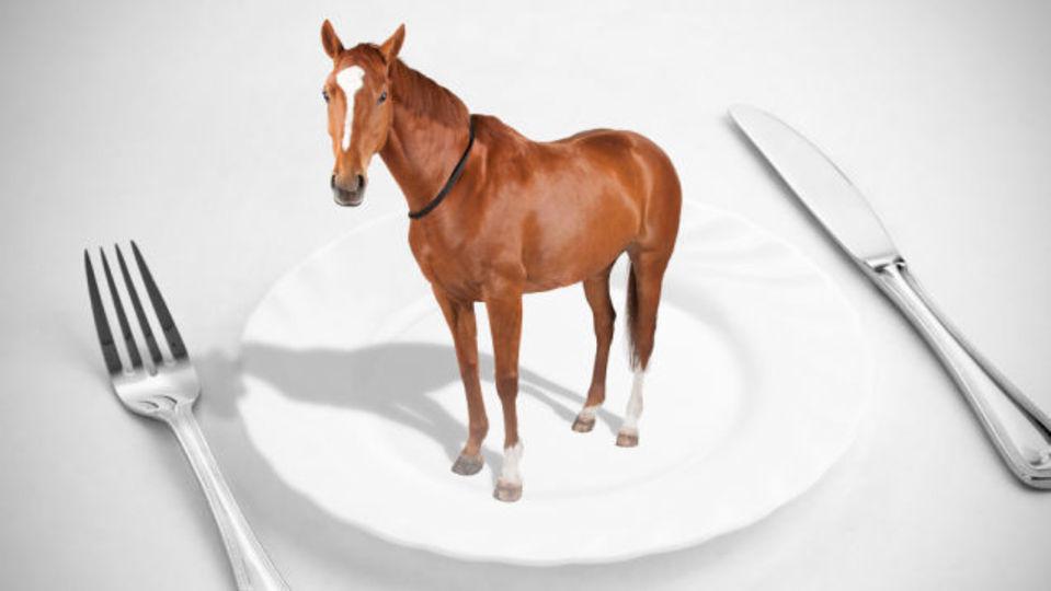 アメリカのひき肉の20%は、別の動物の肉が含まれている