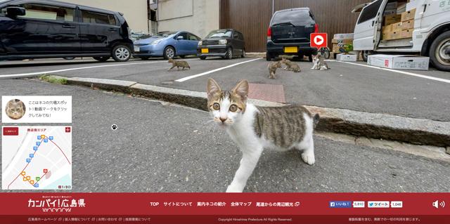 150903neko-streetview002.jpg