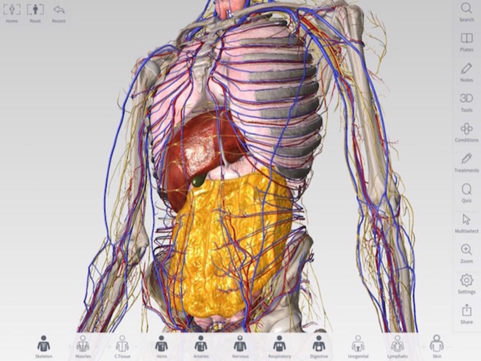 Apple Pencilで自由自在に解剖! 3D4Medicalの「Complete Anatomy」がすごい